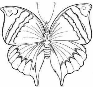 бабочка раскраска красивая раскраска бабочка Twin Star Ru