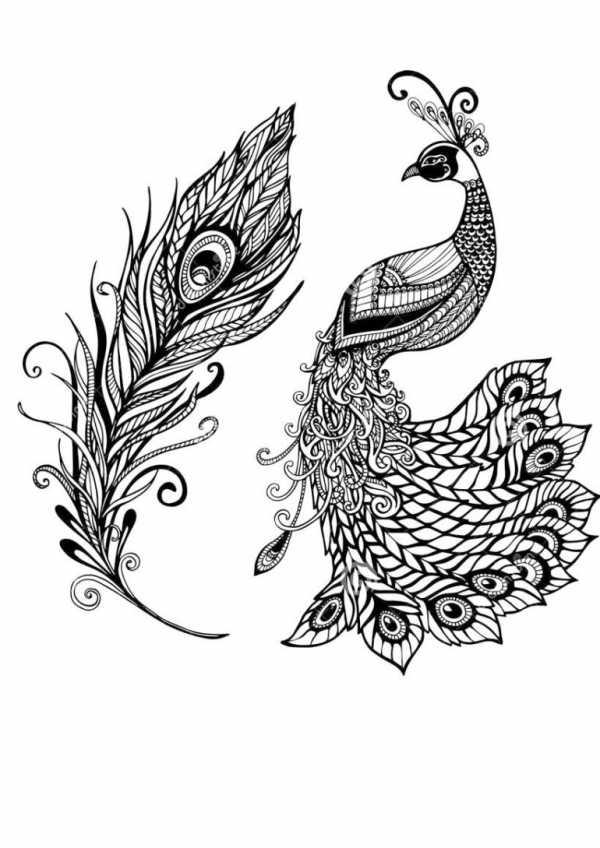 иван царевич и жар птица раскраска раскраски онлайн иван