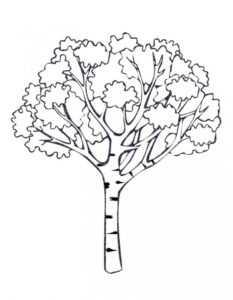Раскраска дерево большое – Раскраска Дерево – Распечатать ...