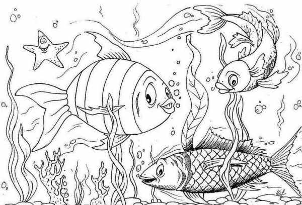 Раскраска рыбы для детей распечатать – Детские раскраски ...