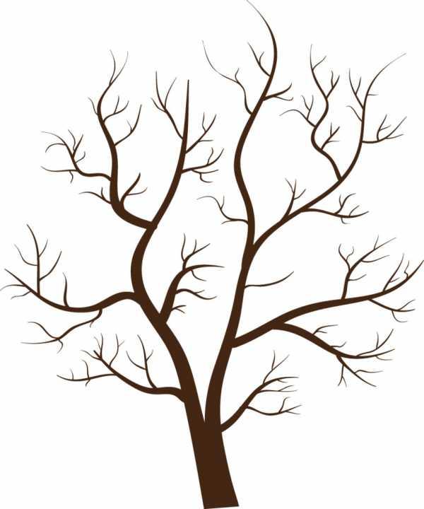 Шаблоны деревьев для рисования без листьев – Раскраски ...