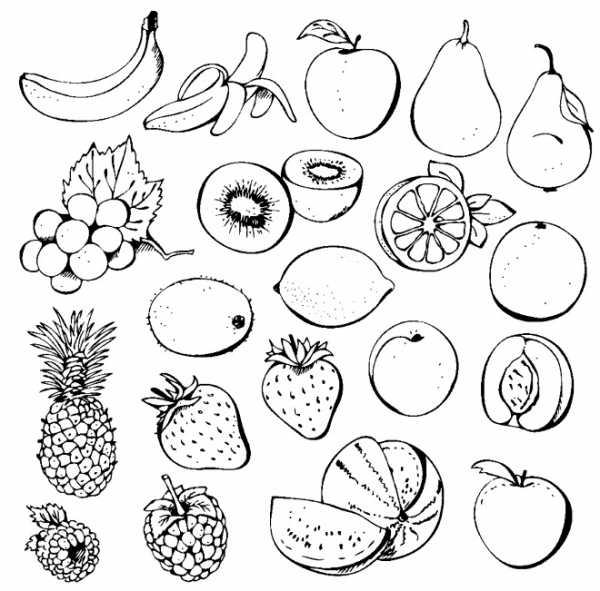 ягоды и фрукты рисунки раскраска фрукты Twin Star Ru